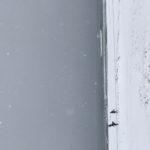 雪の中サーフィンしてきました!スノーサーフ@片貝新堤(2019.2.11)