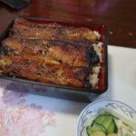 静岡県の浜松と言えば、うなぎと餃子です。名店をご紹介します。